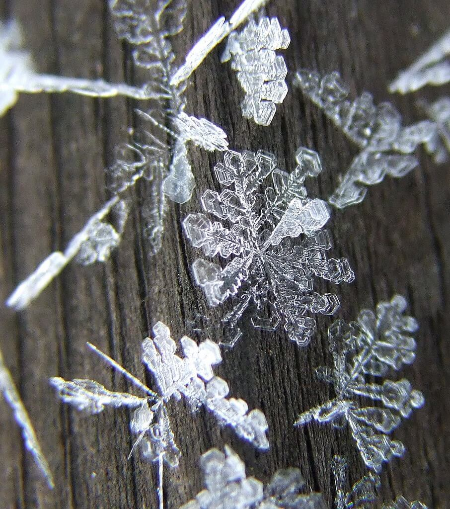 Michigan snowflake