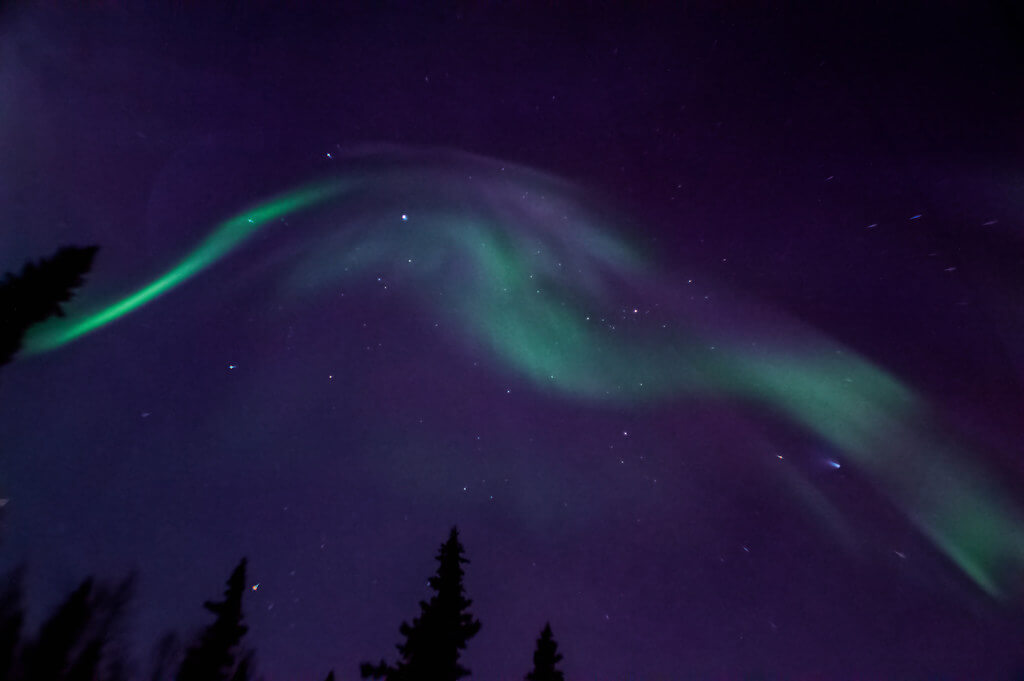 Rebecca - northern lights alaska