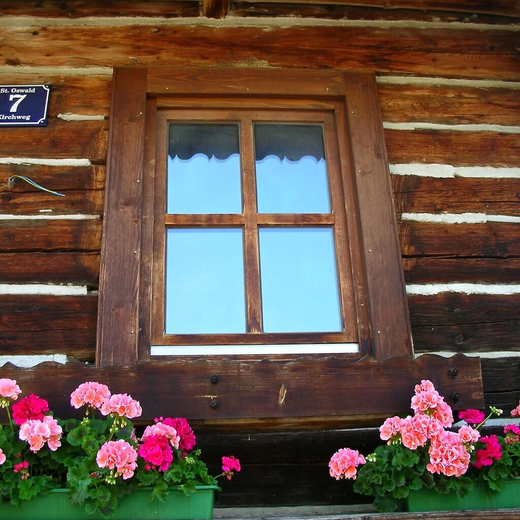 Window with Pink Flowers